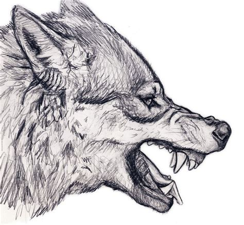 pattern drawing wolf best 25 wolf drawing easy ideas on pinterest how to