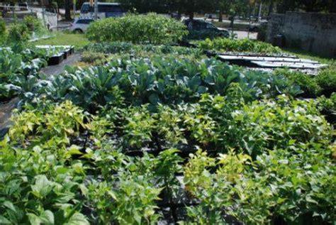 Garden State Farms Inside Green Garden State Farms