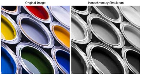 monochrome color blindness archive user thochr23 comparative physiology of vision