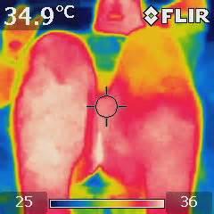 Jual Kamera Thermal Flir E5 Kaskus jual harga flir i3 thermal imaging cameras