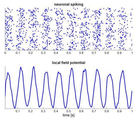 central pattern generator nature review rythmes c 233 r 233 braux et potentiels 233 voqu 233 s tutoriels