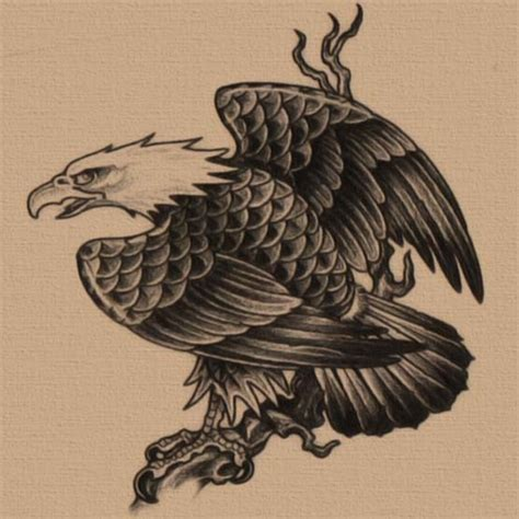 tattoo eagle drawing free eagle tattoo designs eagles pinterest eagle