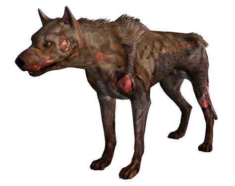 vicious dogs fallout 3 the fallout wiki fallout new vegas