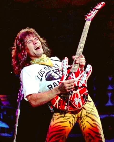 eddie van halen live without a net 171 best images about van halen from stardom to obscurity
