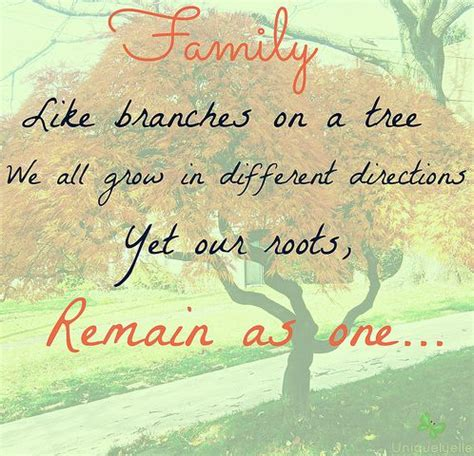 new year quotes about family quotes pinterest