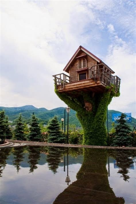 house over water design stack a blog about art design and architecture small homes offices and other