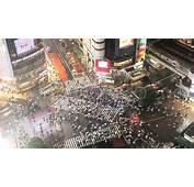 Video Japan Tokyo Shibuya Crossing At Night