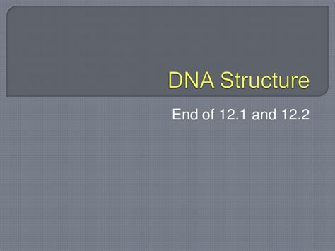 12 2 the structure of dna answers dna structure 12 1 and 12 2 students