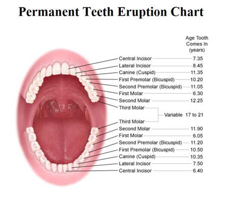 comfort dental lafayette colorado comfort dental lafayette colorado 28 images implant