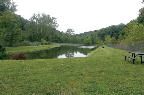 Backyard Bass Pond by Guyses Run Fishing Park In Marion County West Virginia