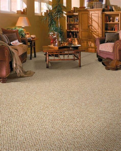 Berber Carpet Bedroom by Best 25 Berber Carpet Ideas On Carpets