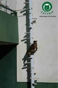 katzen treppe katzenleiter balkontreppe katzentreppe cattrip in marburg