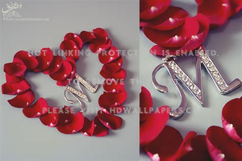 love  rose heart letter petals abstract atx