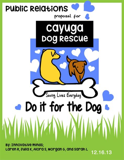 cayuga rescue cayuga rescue relations plan innovative minds