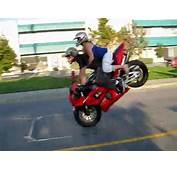 Crazy Martin Motorrad Double Stoppie Schnell Und Sicher
