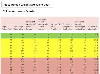 golden retriever age calculator golden retriever puppy weight chart goldenacresdogs
