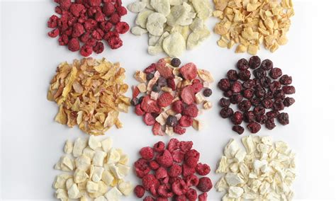freeze dried food how freeze drying works howstuffworks