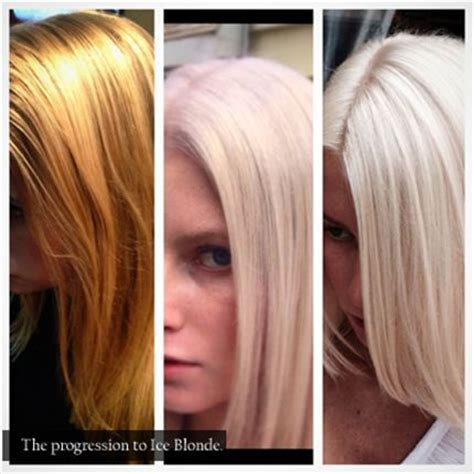 color correction brassy mess to level 10 platinum princess 1000 images about white silver platinum hair on pinterest