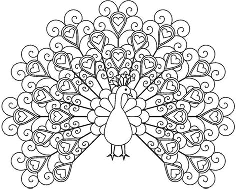 baby peacock coloring page 36 best coloring pages images on pinterest coloring
