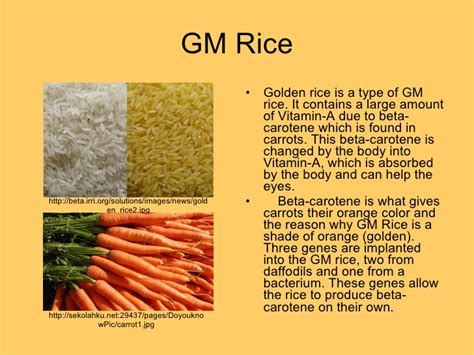 Golden Orange Color by Major Genetically Modified Crops