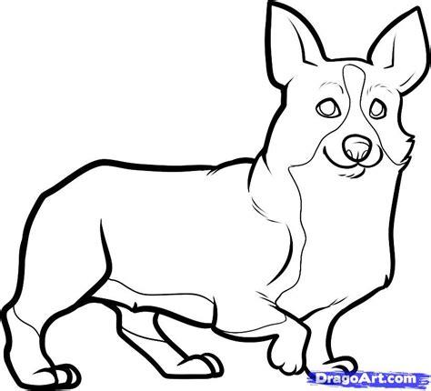 how to draw a corgi corgi step by step pets animals