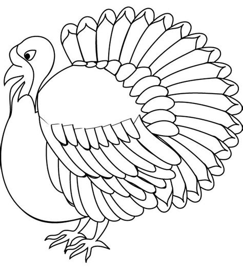 coloring page wild turkey 115 best images about coloring sheets all kinds on