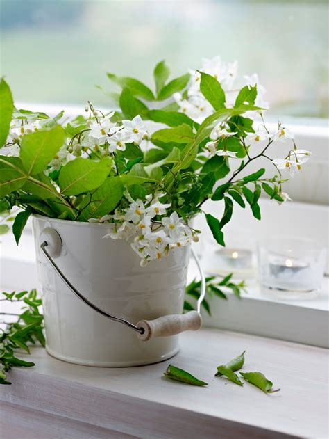 arreglos florales creativos en pinterest arreglos recipientes originales para tus ramos 183 elmueble com