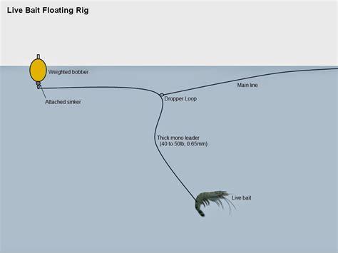Pancing Ikan Laut pancing cara memancing ikan siakap kolam