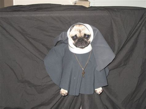 pug costume for child 17 best ideas about pug costumes on diy costumes