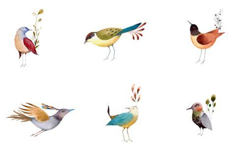 Birds Illustration birds 187 illustration
