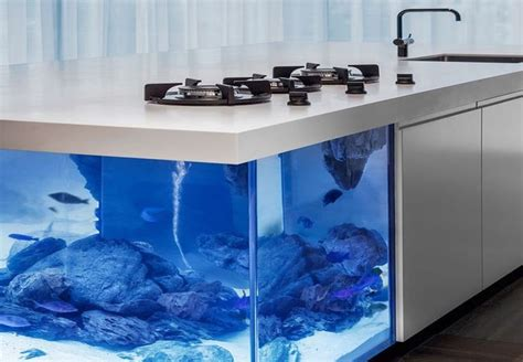kitchen design aquarium ocean kitchen aquarium robert kolenik