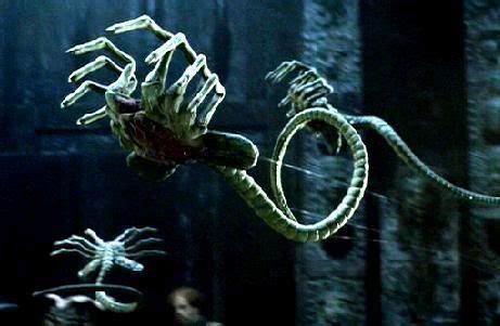 top knot xenopedia the alien vs predator wiki wikia 41 best images about alien vs predator on pinterest