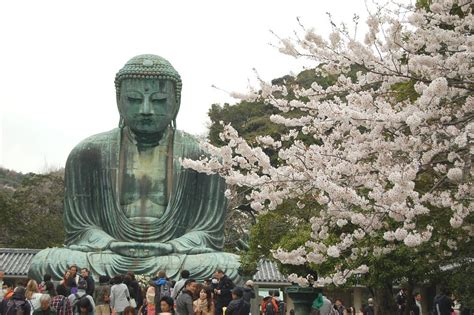 Japanese Big by Big Buddha Daibutsu Buddha Effagies In Japan