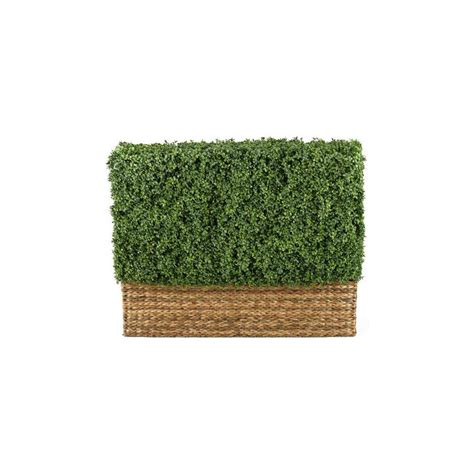 home decor collections home decorators collection htons 4 ft hedge topiary