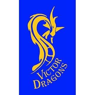 dragon boat racing clubs adelaide clubs dragon boat sa fierce fast furious south