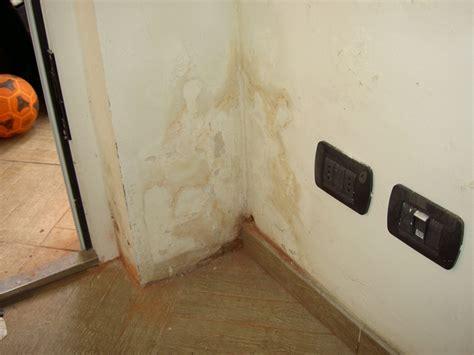 umidit di risalita nei muri uffetto umidit di