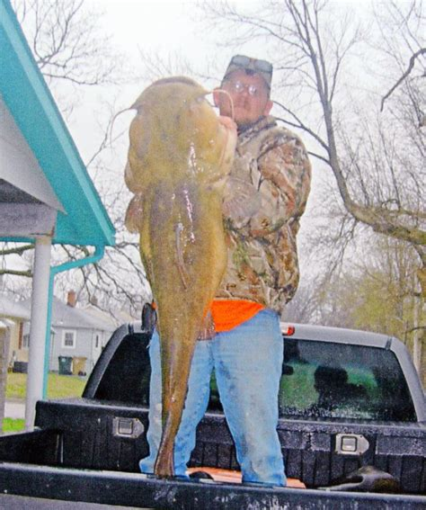 the world biggest virginia largest virginia ever international fishing news igfa