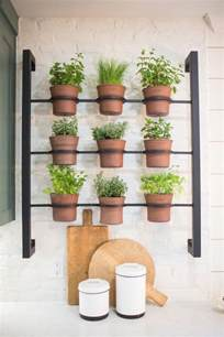Wall Herb Garden by 25 Best Ideas About Herb Wall On Pinterest Indoor