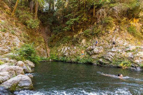 Garden Of Henry Cowell State Park Santa Nature Spots Via Magazine