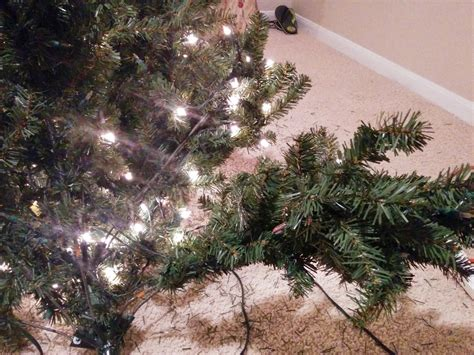 how to find bad lights bulbs how to find bad tree bulb review ebooks