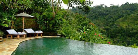 infinity pool bali an infinity pool check lush foliage check comfortable
