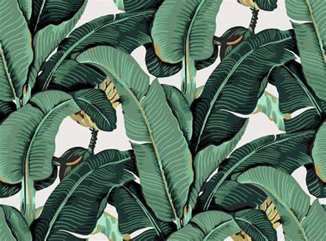 banana palm wallpaper tumblr banana leaf detail from 29 50 official ixxi 174 store