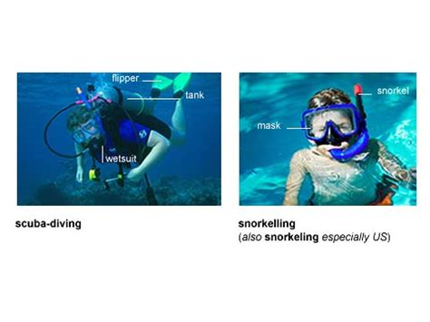 dive meaning scuba diving noun definition pictures pronunciation