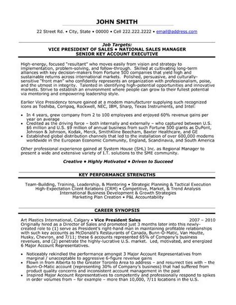 Resume Vice President It 59 Best Images About Best Sales Resume Templates Sles On Professional Resume A
