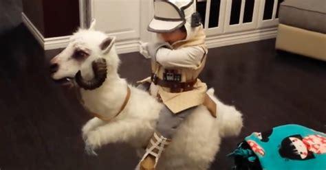 boys tauntaun costume   star wars fans halloween