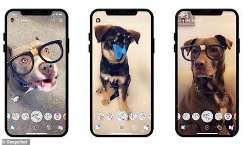 snapchat creates lenses    dogs  cuter