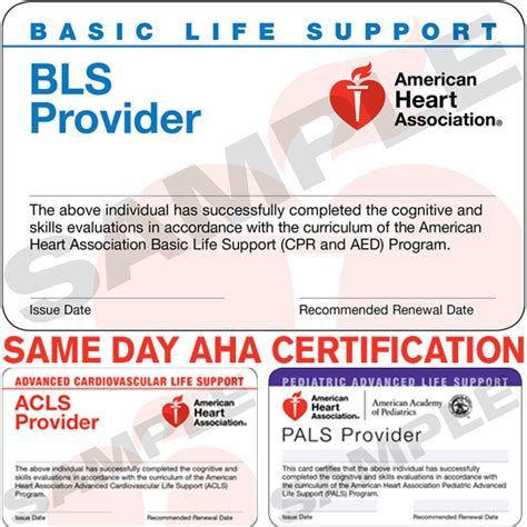 american association card template 28 images of american cpr card template kpopped