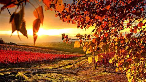 hd autumn wallpapers  wallpapersafari