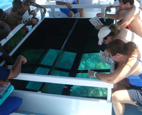 glass bottom boat cruise glass bottom tours waikoloa hawaii kona a bay