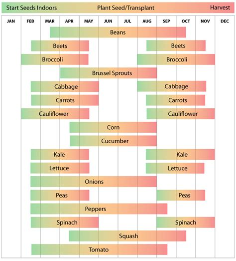 virginia vegetable planting calendar farmer seeds